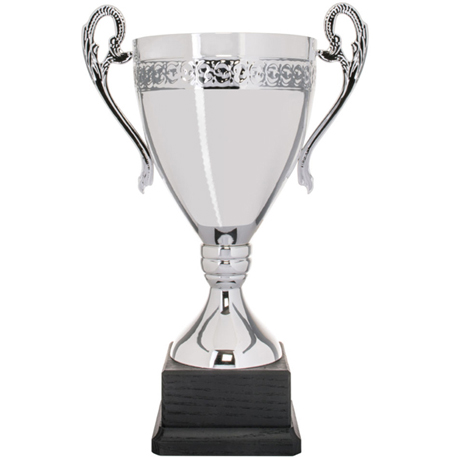 Pokal Minnesota